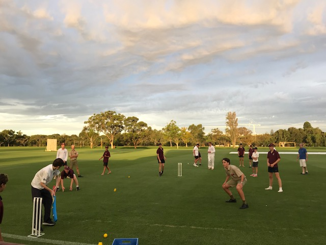 all abilities cricket